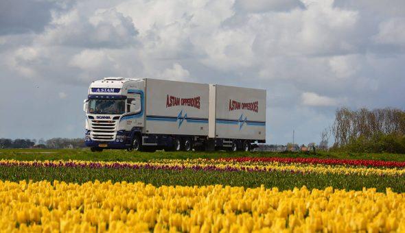 Bloemen en planten combinaties opgebouw op een Scania